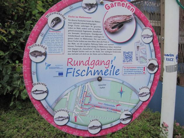 Auf dem Rundgang der Fischmeile sieht erfährt und sieht man viel Interessantes