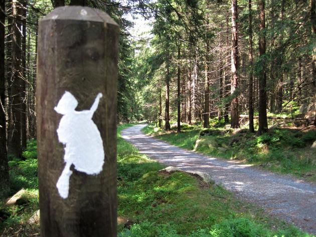 Ein Teil des Weges auf den Brocken ist breit ausgebaut.