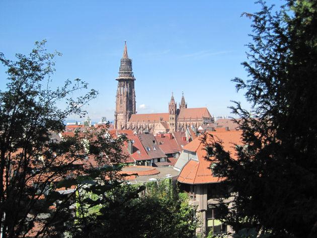 Blick auf die Dächer von Freiburg