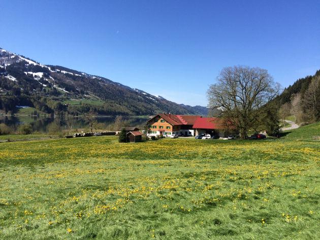 Hübsche Bauernhäuser säumen den Weg