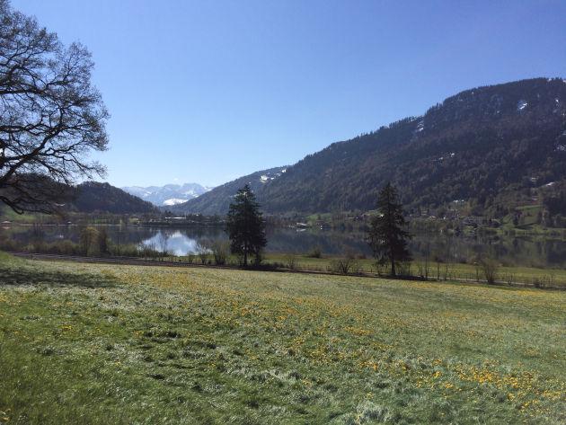 Der schönste Streckenabschnitt führt oberhalb des Alpsees entlang
