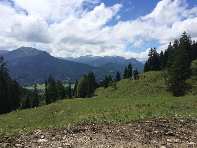 Nach dem Brunch wanderten wir von der Seealpe ins Tal hinab.