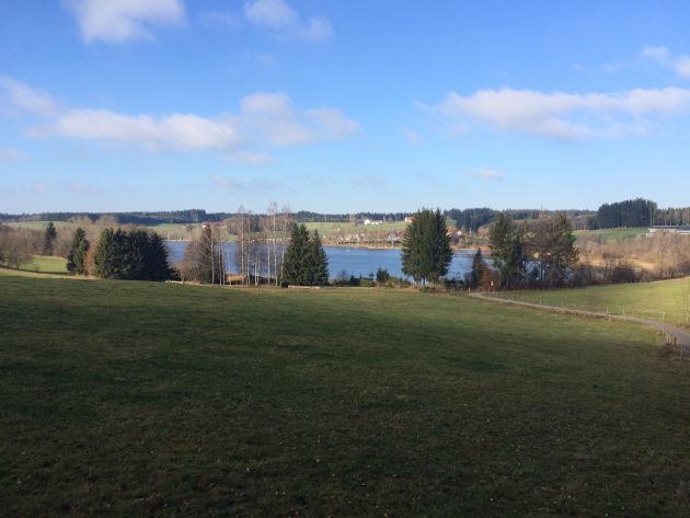 Spaziergang bei Sonne und kaltem Ostwind in der Nähe von Leutkirch