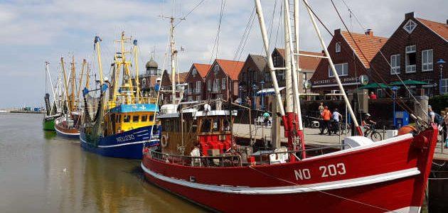 mupfel_244 – Mamma Mia in Ostfriesland