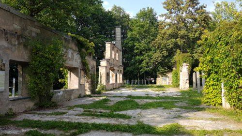 Bild Ruinen einer alten Steinschleiferei in Weißenstadt