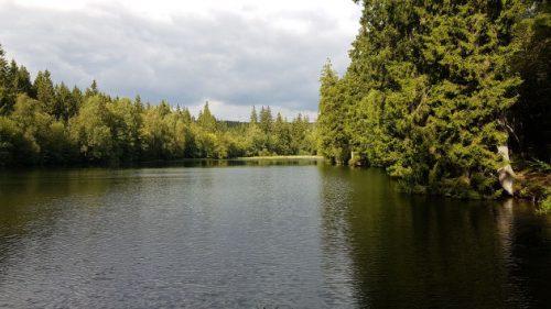 Bild Der Silbersee am Rande des Naturmythenpfads