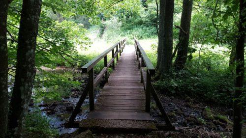 Der Weg zur Ludwigshöhle