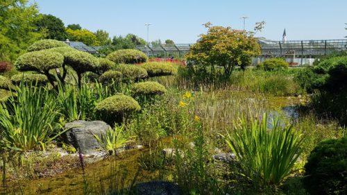 Blick über das Gelände des Blumenparks von Dehner