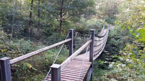 Holzbrücke im WeltWaldHarz