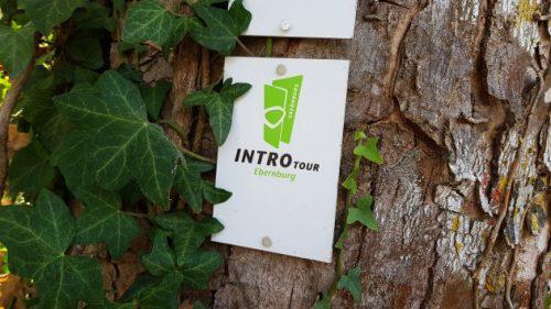 »3x3 Salinental: IntroTour Ebernburg«