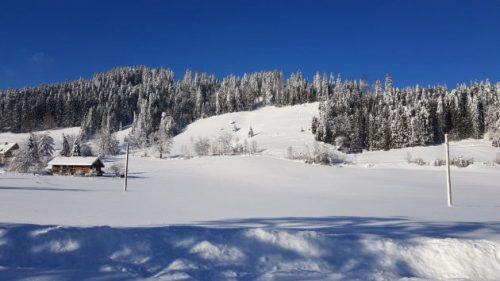 Schneelandschaft im Allgäu.