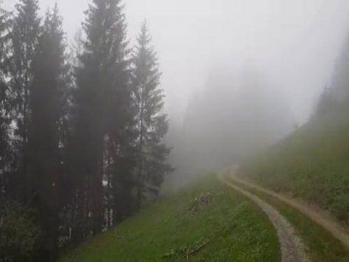 Nebelsuppe bei unserer kleinen Wanderung