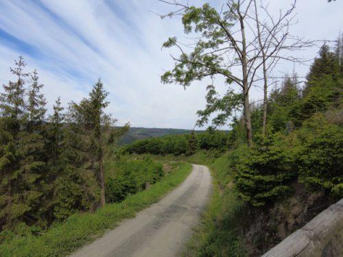 Wanderweg im Harz