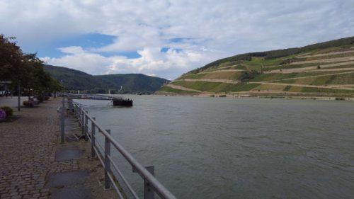 Blick auf den Rhein in Bingen
