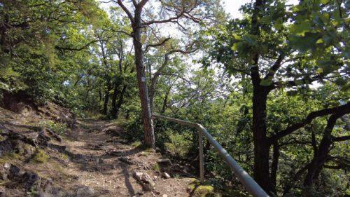 Wanderweg zum Rotenfels hinauf